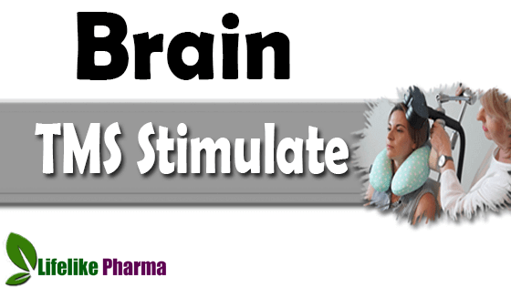 What Part of the Brain Does TMS Stimulate